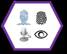 Hex - Biometric.png