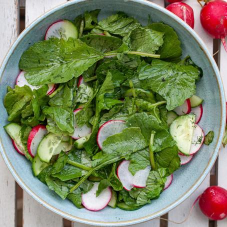 Radieschensalat mit gurken