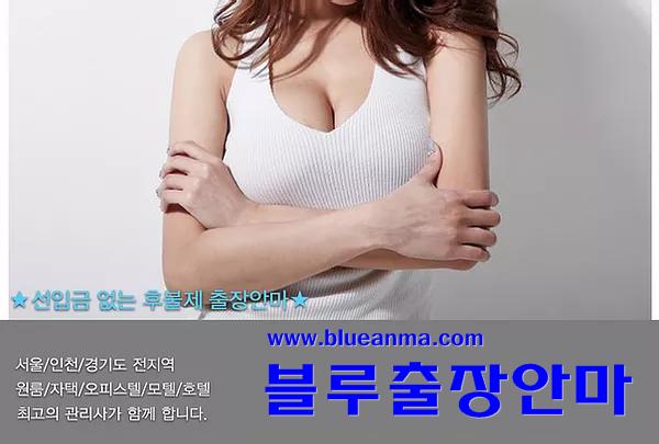 블루출장안마 _ 서울출장안마 _ 경기출장안마 _ 인천출장안마 _ 출장마사