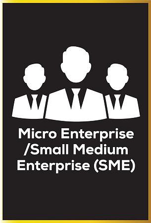 Micro & SME Hover Design.jpeg