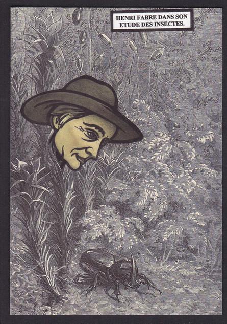 Fabre-entomologie-Provence (1).jpg