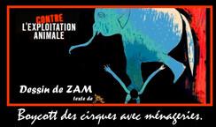 ZAM (1).jpg