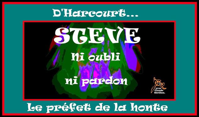 Steve (12).jpg