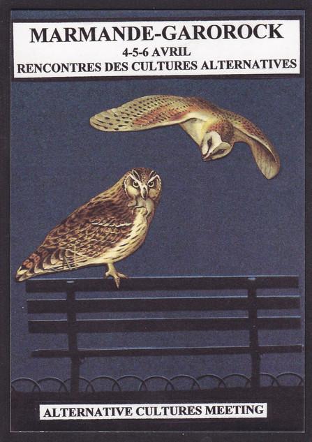 Chouette, Marmande (3).jpg