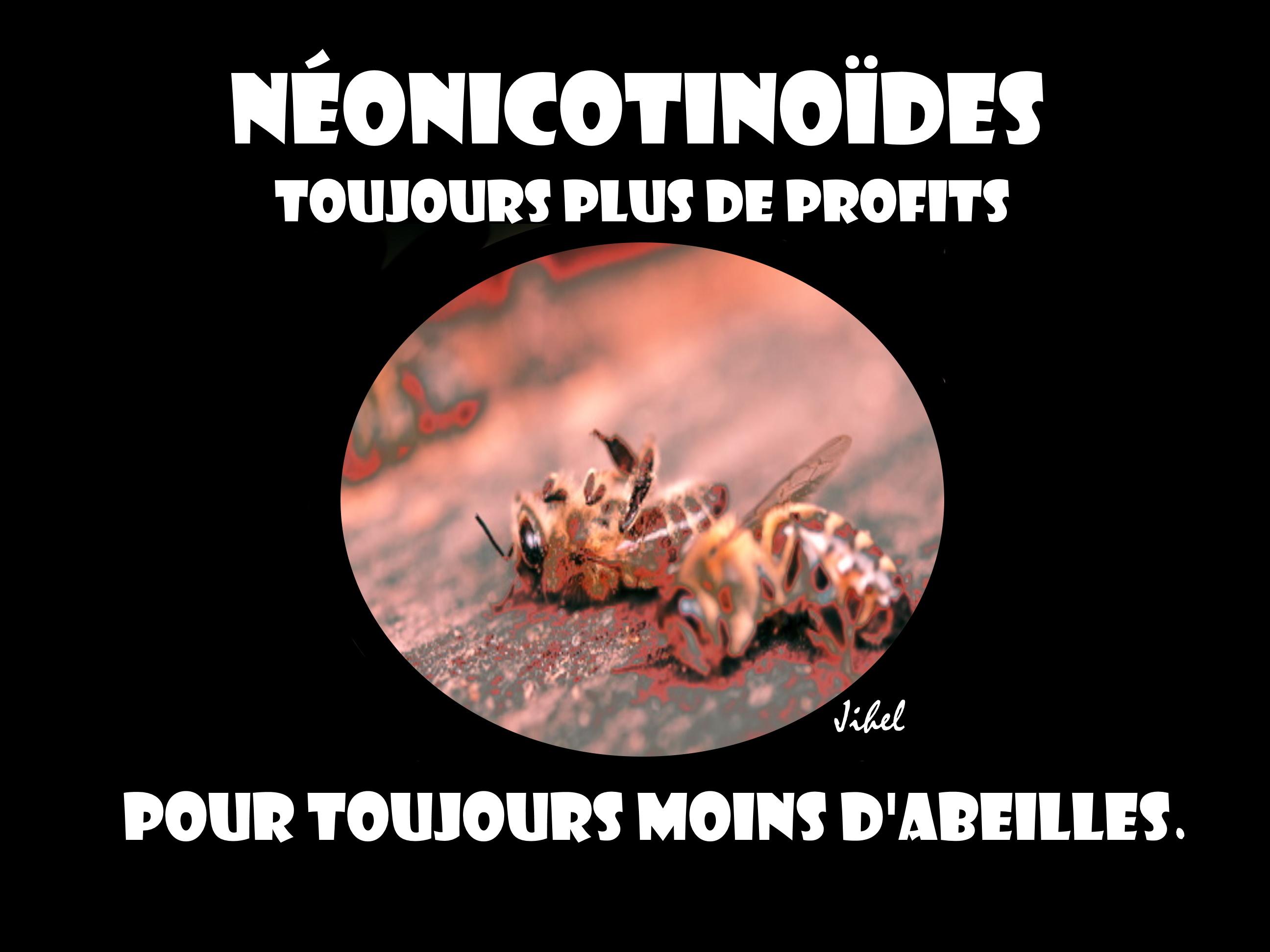 Néonicotinoïdes (1)