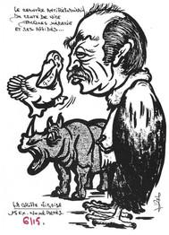 Rhinocéros 112.Coll J.D..jpg