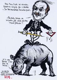 Rhinocéros 96b.jpg