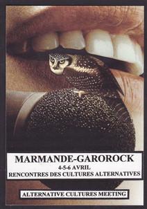 Chouette, Marmande (1).jpg
