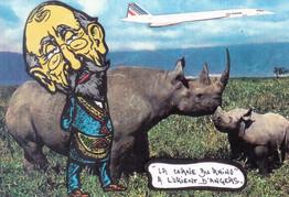 Rhinocéros 154.Tirage 5 ex...jpg