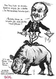 Rhinocéros 96a.Coll J.D..jpg