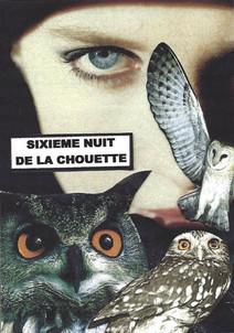 Chouette (7).jpg