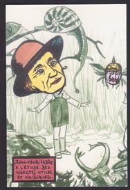 Fabre-entomologie-Provence (2).jpg