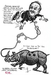 Rhinocéros 101.Coll J.D..jpg