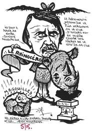 Rhinocéros 131.Coll J.D..jpg