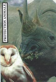 Rhinocéros 2.Coll J.D.Tirage 15 ex.jpg