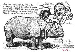 Rhinocéros 103.Coll J.D..jpg