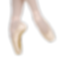 balletpointeshoes.png