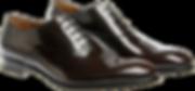 men_shoe1.png