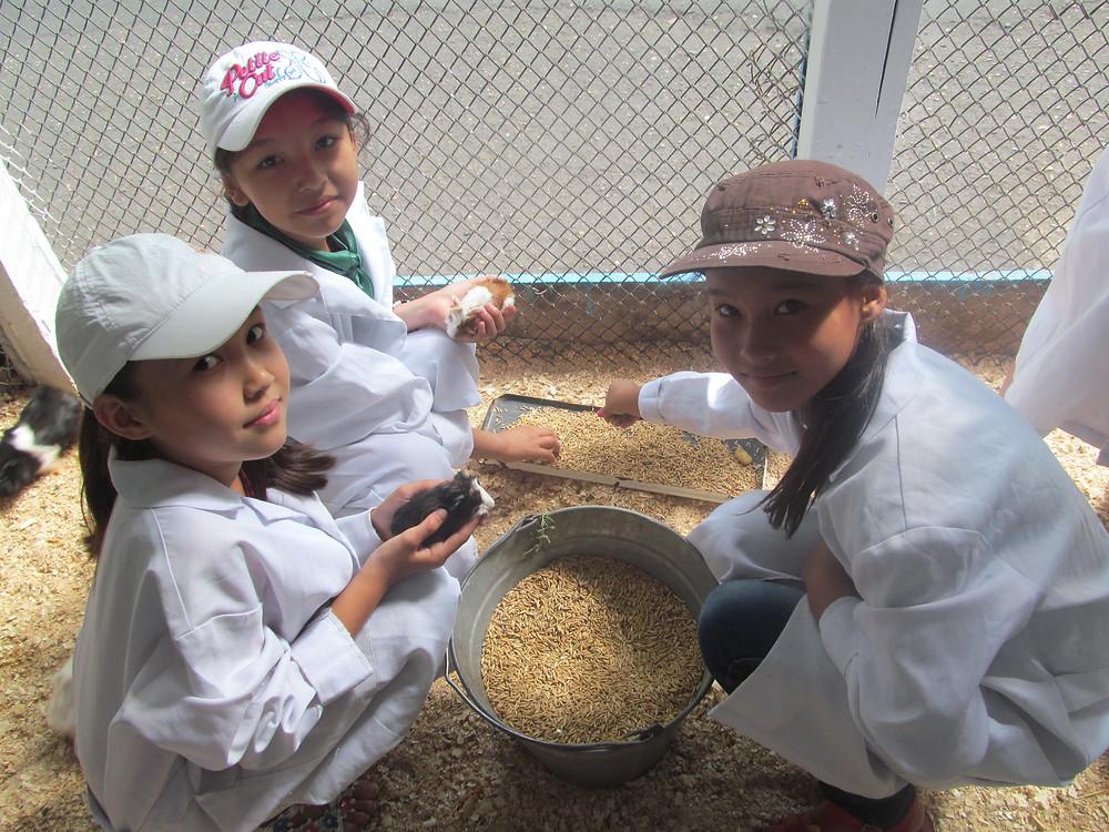 Лучший детский отдых организован в 17 летних лагерях Северного Казахстана 21 июл