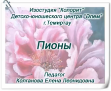 """Интерактивный лагерь """"Көңілді жаз-2020"""""""
