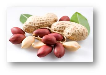 Почему арахис называют китайской фисташкой?