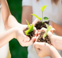 Детям об экологии: полезные советы