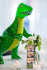 Who doesn't like Dinosaur's? We love a good theme party!