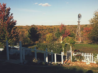 Laurel Brooke windmill.jpg