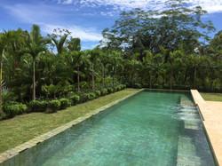 orquideas_pool