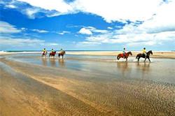 hacienda_pinilla_horses_beach