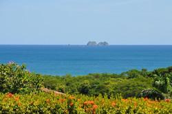 malinche_catalina_island_views