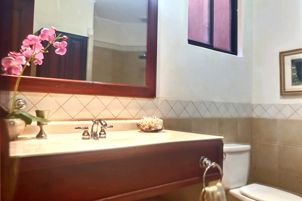 17_bougainvillea_8209_flower_bathroom
