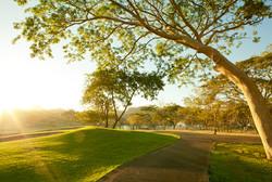 conchal-golf-course