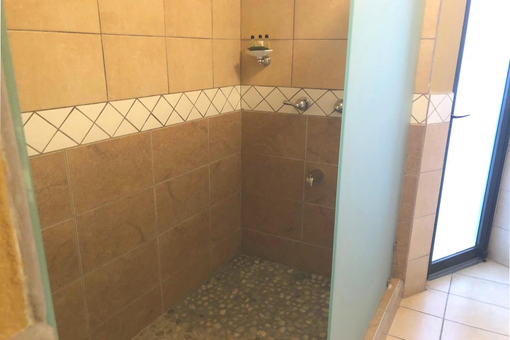 bougainvillea_6102_shower
