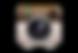 social_fans_instagram-1.png