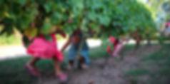 Gite Loire chambord location maison vacances week end campagne châteaux enfants activité séjour