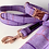 Thumbnail: Lilac Check Lead
