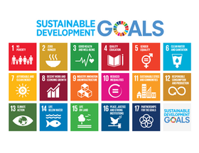 Teaching the SDGs - 17 Goals to Transform Our World and Our Classrooms