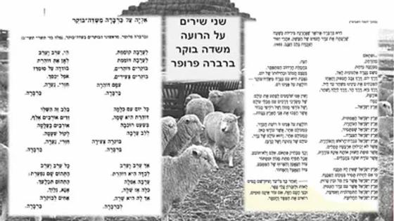 שירי+הרועה+ברברה-400w.jpg