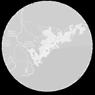 Corozo Buttons   Panama