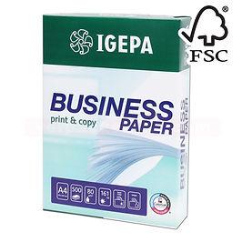 IGEPA Business JPEG.jpg