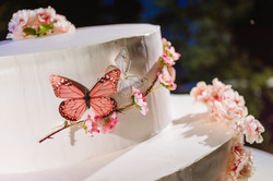 Butterfly Event
