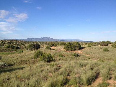 Your Divine Light Santa Fe NM View