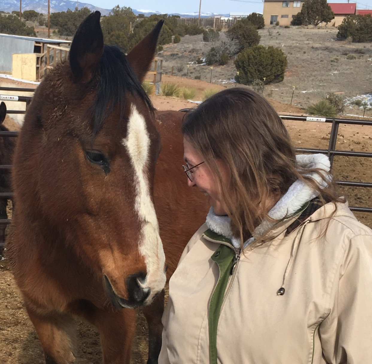 Equine Intuitive - New Client Special