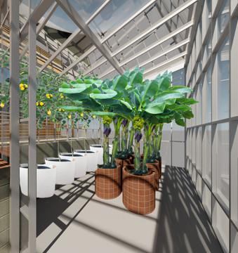 PROJECT T.H.R.I.V.E. - Tropical Greenhouse