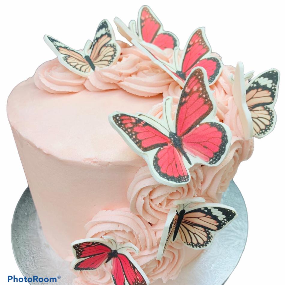 Butterfly Celebration Cake