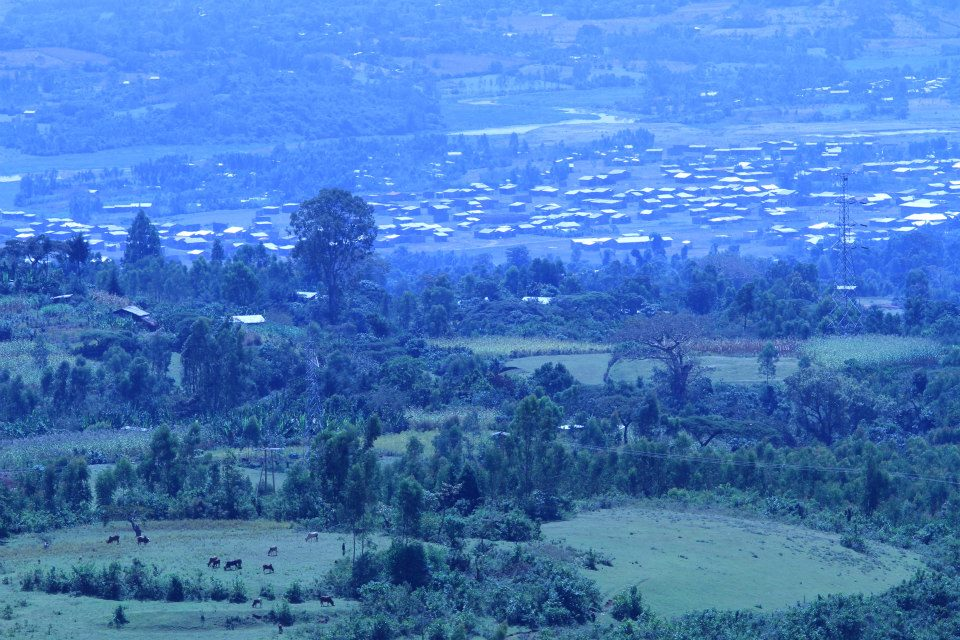 Jimma town