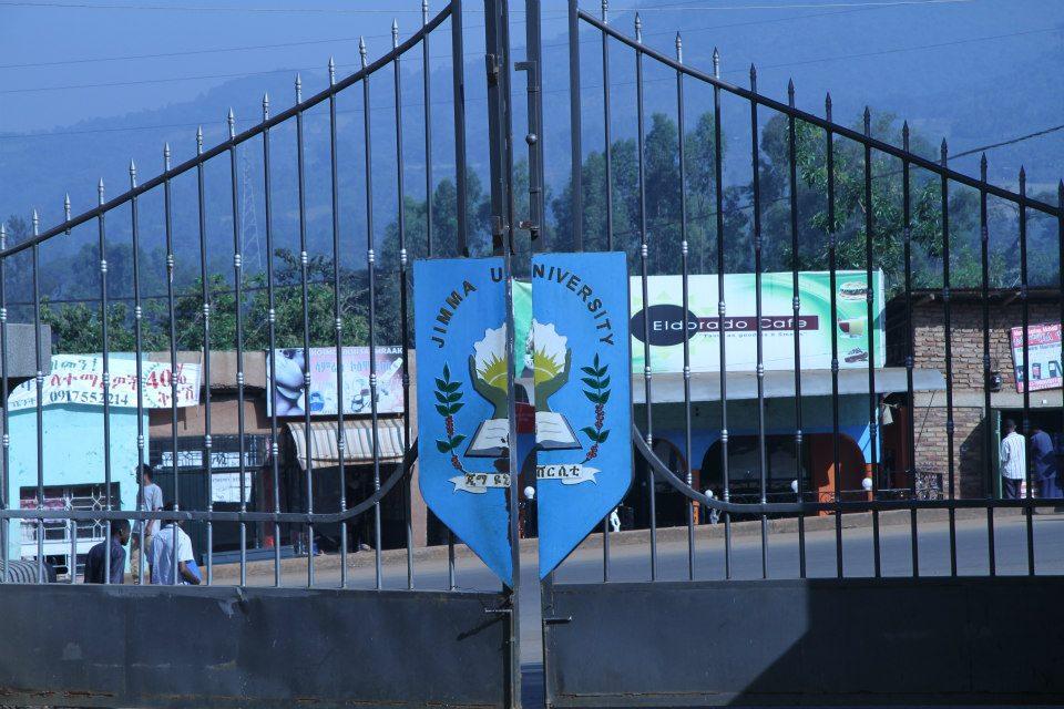 Gateway of Jimma University