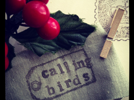 """Four Calling Birds"" – Know your place!"