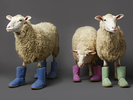 Sheeping it up – Quirky winter woollies for the home